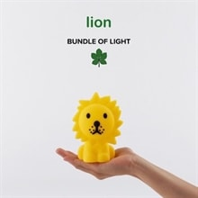 Lion bundle of light